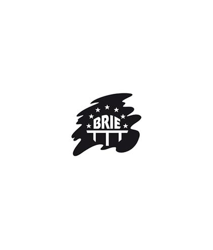 Logo-BRIE-1.jpg